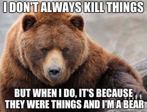 Da Bear. . Da Bear