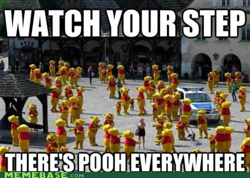 Dammit Pooh. . STEP. kazimierz dolny in poland. Dammit Pooh STEP kazimierz dolny in poland
