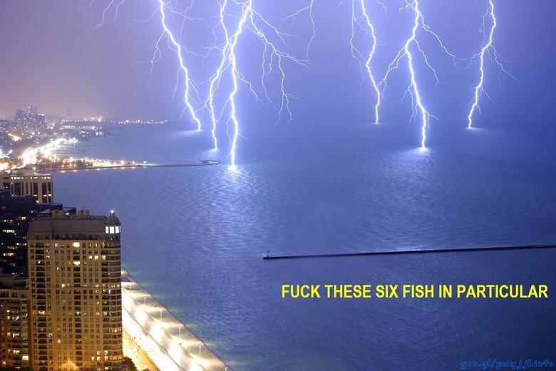 damn. god.. ilk. God is supercharging sharks in preparation for Shark Week. RE lightning Fish sea