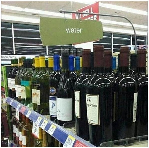 Damn it Jesus, not again.... . Damn it Jesus not again