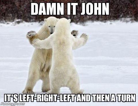 dancin. .. wow, they can barely dance polar Bear