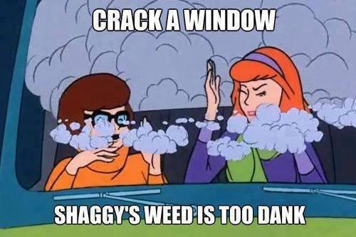 Dank weed 420 blaze it. Not sure if repost. jjwtj, pupil, i, por( fix. Cars crashes