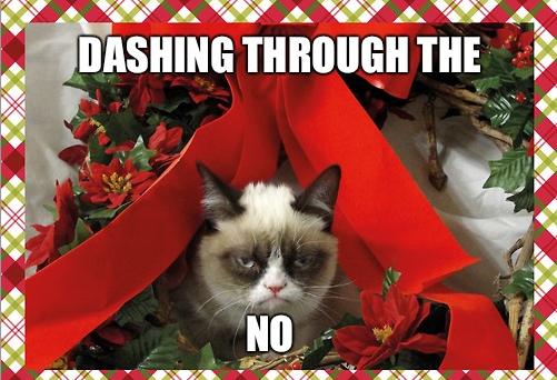 Dashing through the.... Tits: www.youtube.com/watch?v=YVBhBYs74MM. THE (lit; grumpy cat Christmas