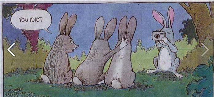 DAT BUNNY!. look at the bunny being stupid HAHAHAHA LE LELELE TROLOLOL xDDDDDDDDDDDDDDDD.. Hahah! That is a very BUNNY joke! Ahahaha! DAT BUNNY! look at the bunny being stupid HAHAHAHA LE LELELE TROLOLOL xDDDDDDDDDDDDDDDD Hahah! That is a very BUNNY joke! Ahahaha!