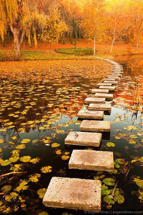 Dat path. I need one.. Beautiful reminder. Dat path I need one Beautiful reminder