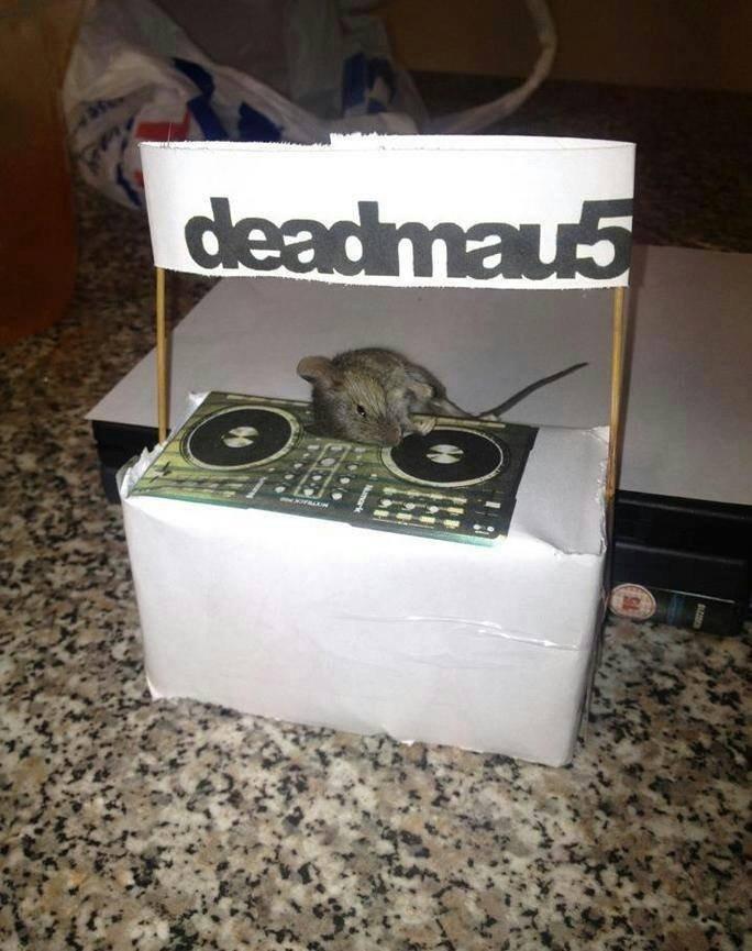 Deadmaufive. . Deadmaufive