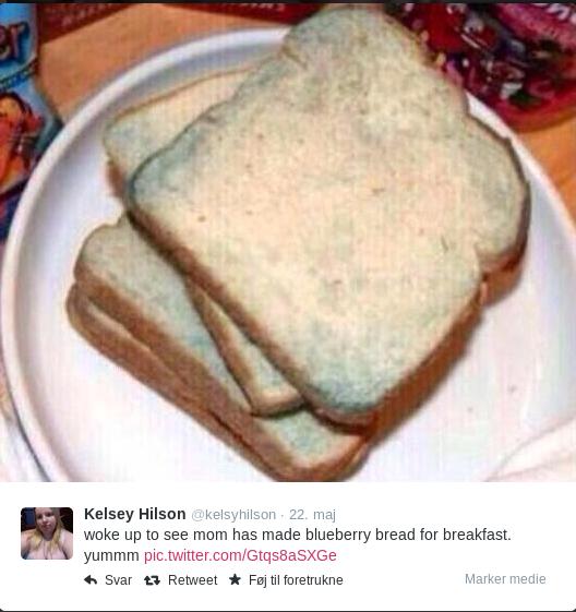 "delicious. . Kelsey Hilson . 22. mm woke up an see mom has made blueberry bread far breakfast. yumma in Saar "" Retweet. I'm no Albanian but isn't that stale bread? delicious Kelsey Hilson 22 mm woke up an see mom has made blueberry bread far breakfast yumma in Saar "" Retweet I'm no Albanian but isn't that stale bread?"