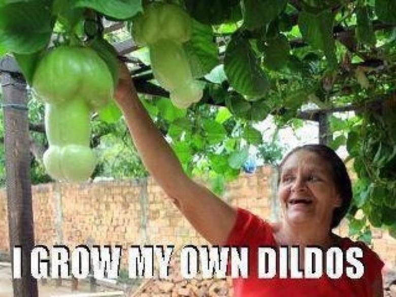 Dildos. .. Looks like OP's personal garden. Dildos Looks like OP's personal garden