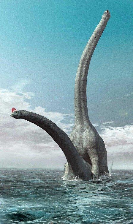 Dinosaur sex. No, really, it's dinosaurs having sex.. sexy dinosaurs