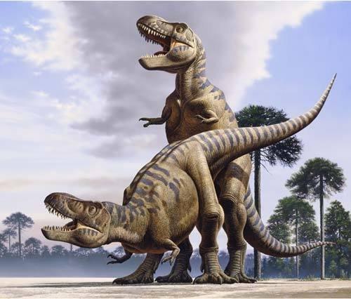 Dinosaurs Had Teen Sex. news.nationalgeographic.com/news/2008/01/080114.... dinosaur sex Butt WTF science
