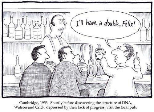 DNA. . DNA