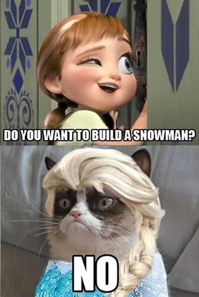 do you wanna?. the description. Frozen grumpy cat
