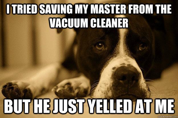 dog problems. . I TRIED '' iii mom THE dog problems I TRIED '' iii mom THE