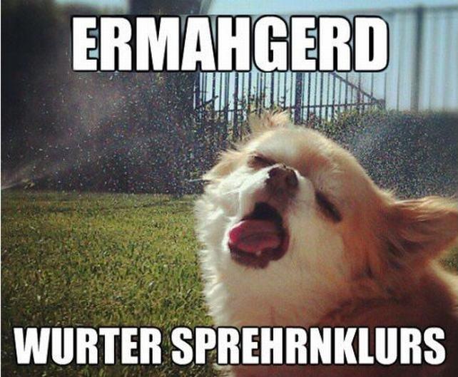 dog. Source: Imgur. gits. That dog looks like it could star in a twisted bukake vid. dog Source: Imgur gits That looks like it could star in a twisted bukake vid
