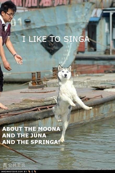 Dog likes to Singa. he likes to singa. AND THE a NA i like to Singa