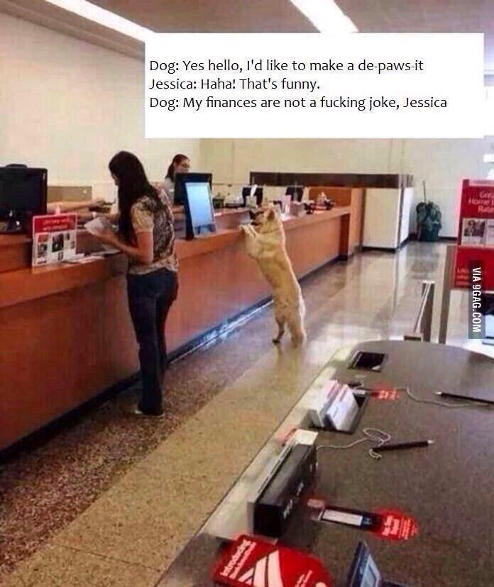 Doge. . t tloa' filii hello, Pd like to make a ' Jessica: Dog: My . are not a joke, Jessica iii Elli