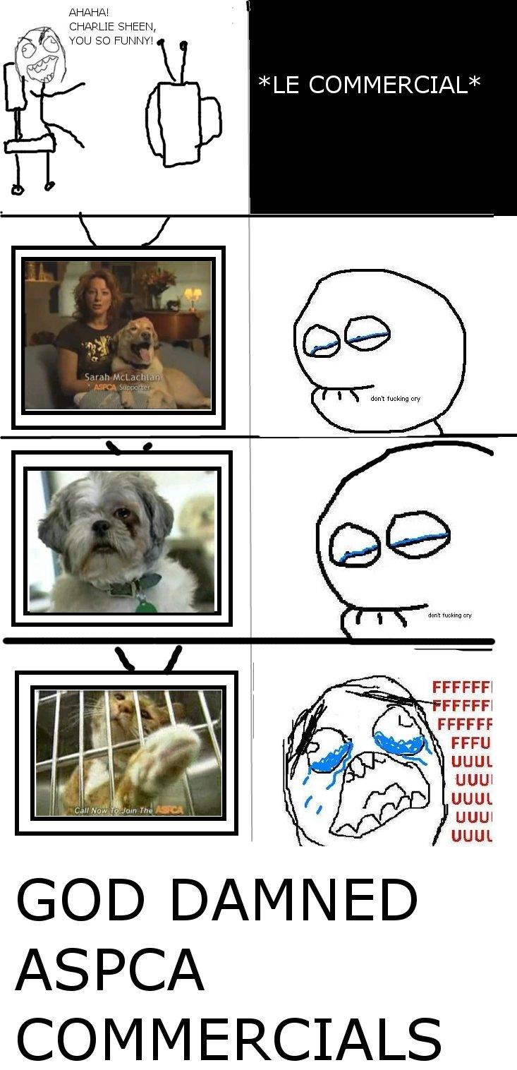 DON'T FUCKING CRY. It gets me every time.. a!! lget (tii FLUFFI i% hake ' FFUU Cic) / l tsal ED. RSPCA ;D ASPCA dont fucki