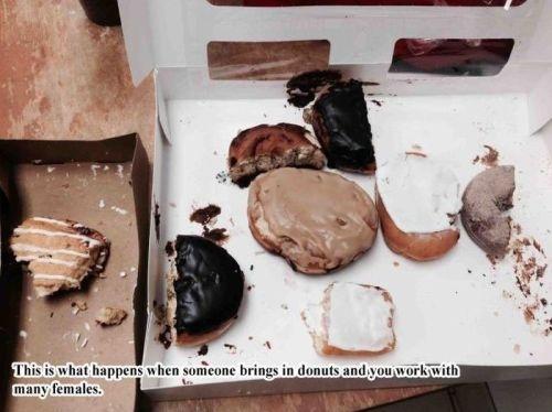 "donuts. . Thibi hirai' u hen L, deum, brings in donuts und.: n: -u ""irak' liitle. i swear to god my gender is thick sometimes just eat a doughnut or three donuts Thibi hirai' u hen L deum brings in und : n: -u ""irak' liitle i swear to god my gender is thick sometimes just eat a doughnut or three"