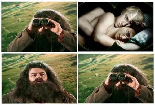 Hagrid. . Hagrid