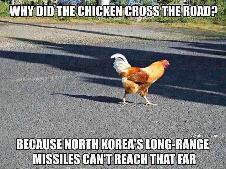 hahahaha. <3. chickens can avoid Missiles