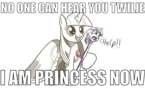 Hail the new princess. . my little pony