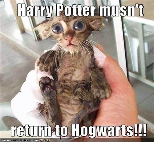 Harry potter. . x II Harry potter x II