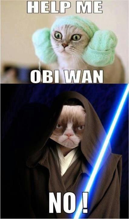 Help me. .. obi-wan keNO!bi Help me obi-wan keNO!bi