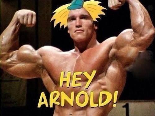 Hey. Unibrow cunt destroyer. arnold