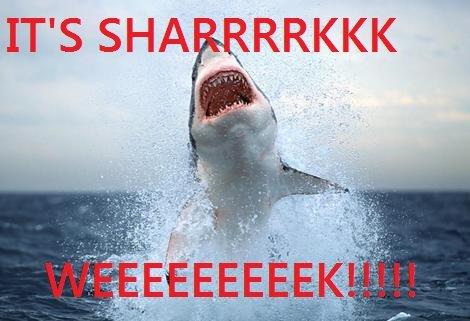HEY GUYS DID YOU HEAR. RAAAAAA.. IT' S SHA Shark week epic sharks are winning