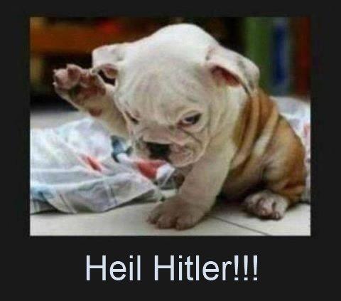 Hitler Dog. . Heil Hitler!!! Hitler Dog Heil Hitler!!!