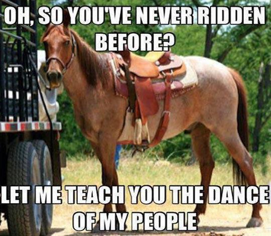 Horse. . gtd a LET ME mung! THE . csar' l Horse gtd a LET ME mung! THE csar' l