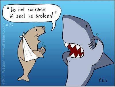 how to confuse a shark. . til seal E broken'. 'd how to confuse a shark til seal E broken' 'd
