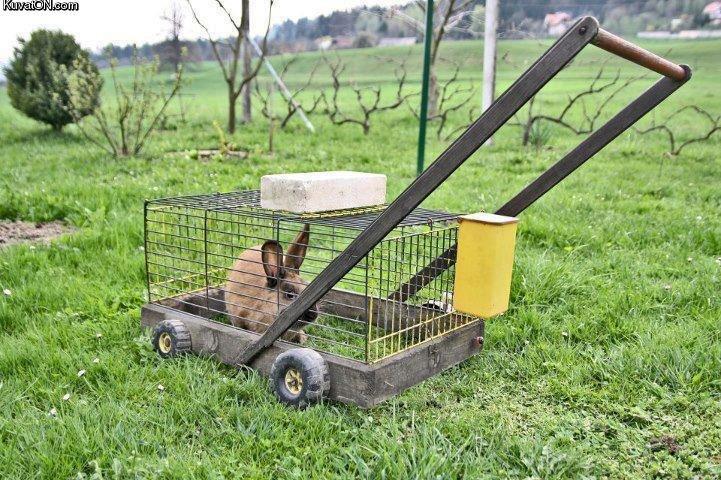 Lawn Mower. . Lawn Mower