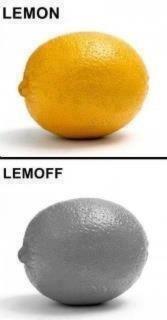 Lemon. So that's what it means... LEE!.  Lemon So that's what it means LEE!