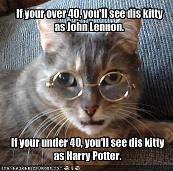 Lennon Potter Cat. I see him as Lennon<br /> Potter stole John's glasses. lla' I as harry Potter.. i see ozzy osbourne Beatles John Lennon Harry Potter glasses Cats Animals