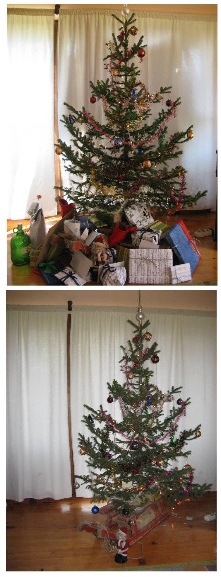 Like it is not the same Christmas tree. . Like it is not the same Christmas tree
