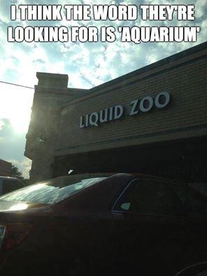 Liquid. .. Yes, it blends! Liquid Yes it blends!