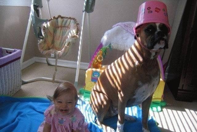 Little Brat. . Dog bucket