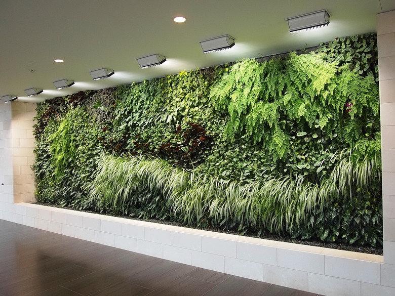 living walls. .. Looks like the vegitable isle at target Wall