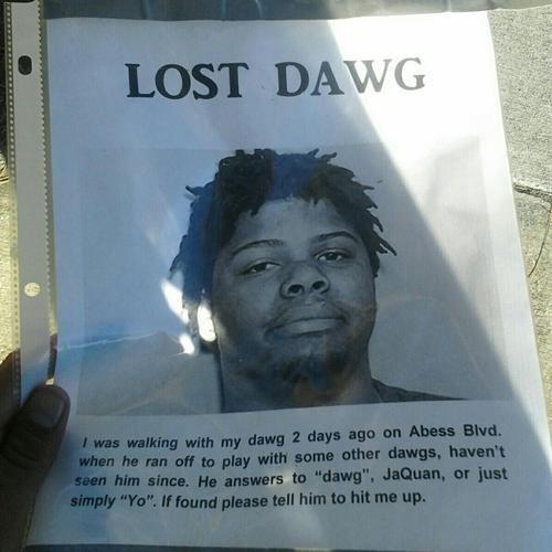 Lost Dawg. Oh noes.. yo