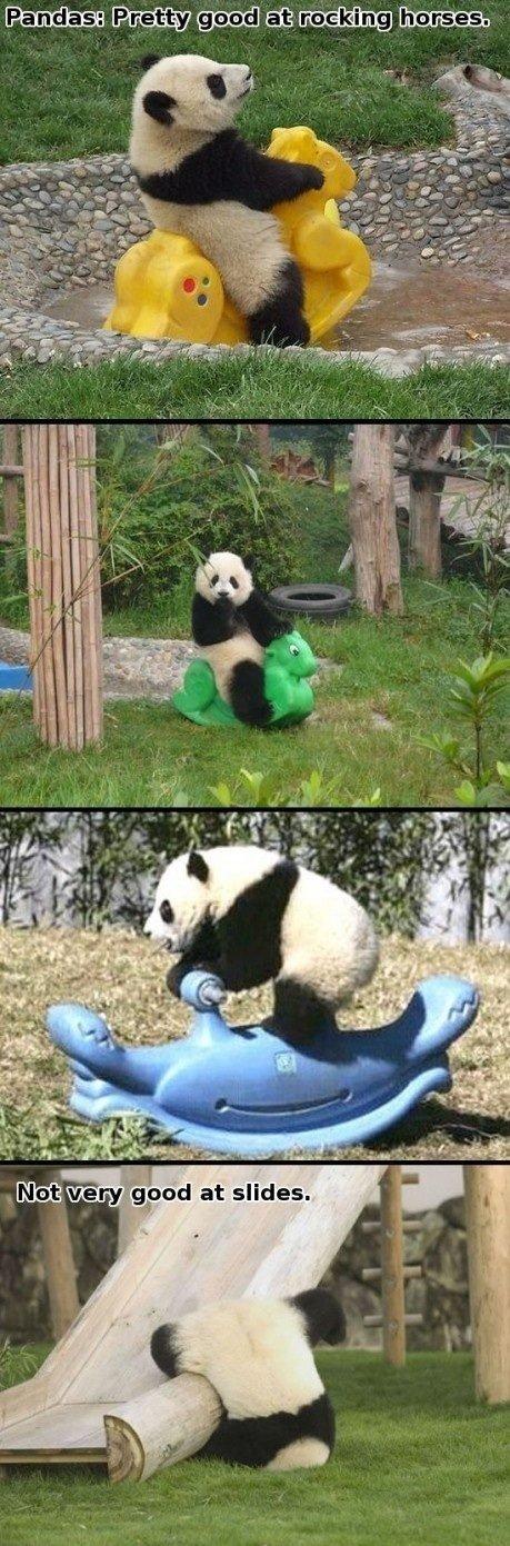 Pandas. .. Repost. Pandas Repost