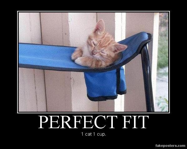 Perfect fit. . PERFECT FIT' 1 katl cup, Perfect fit PERFECT FIT' 1 katl cup