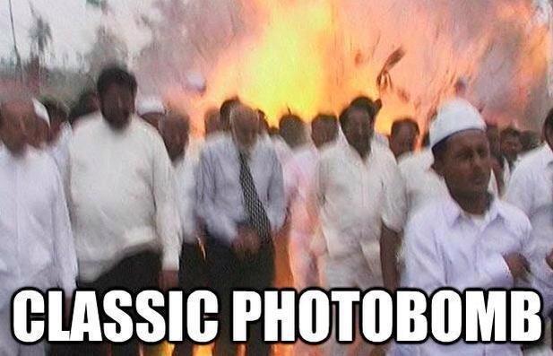 Photobomb. . BESSIE. gif if anyone wants it Photobomb BESSIE gif if anyone wants it