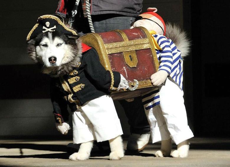 Pirates. . Pirates