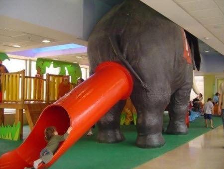 playground fail. . playground fail