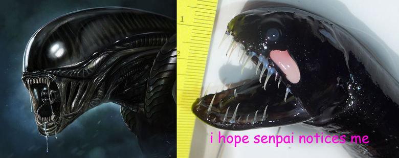 Pls senpai. . Anime Cute alien senpai Yandere