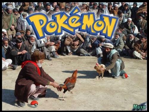 Pokemon IRL. . I like cocks