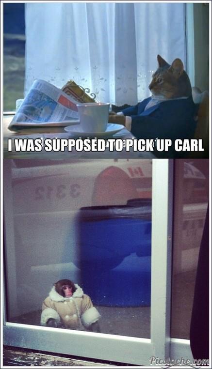 Poor Carl. . I ' UP EARL. RE: post chimp carl miniature