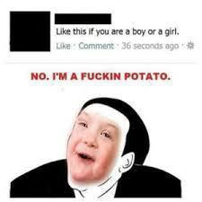 Potato. i want to see everyone's best potato, post your best potato.. potato, you say? never Go full potato
