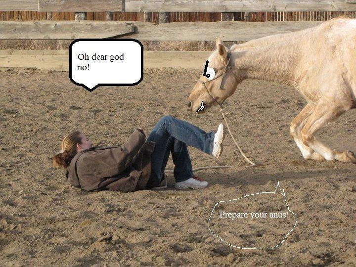 prepare you anus. use protection you two. Horse Rape anus